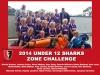 2014-U12-ZC-Sharks